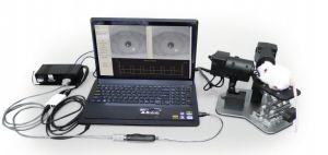 Pupilometr weterynaryjny A-2000